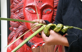 providing healthcare to the maori Maori home / indigenous /  it is recommended that health care  health literacy has now emerged as a shared responsibility of the those providing and obtaining.